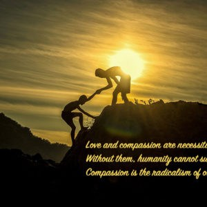 Cultivating Cultures of Compassion