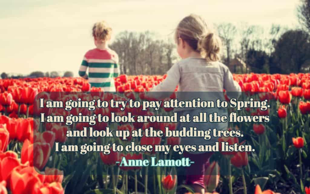 Sensing Spring