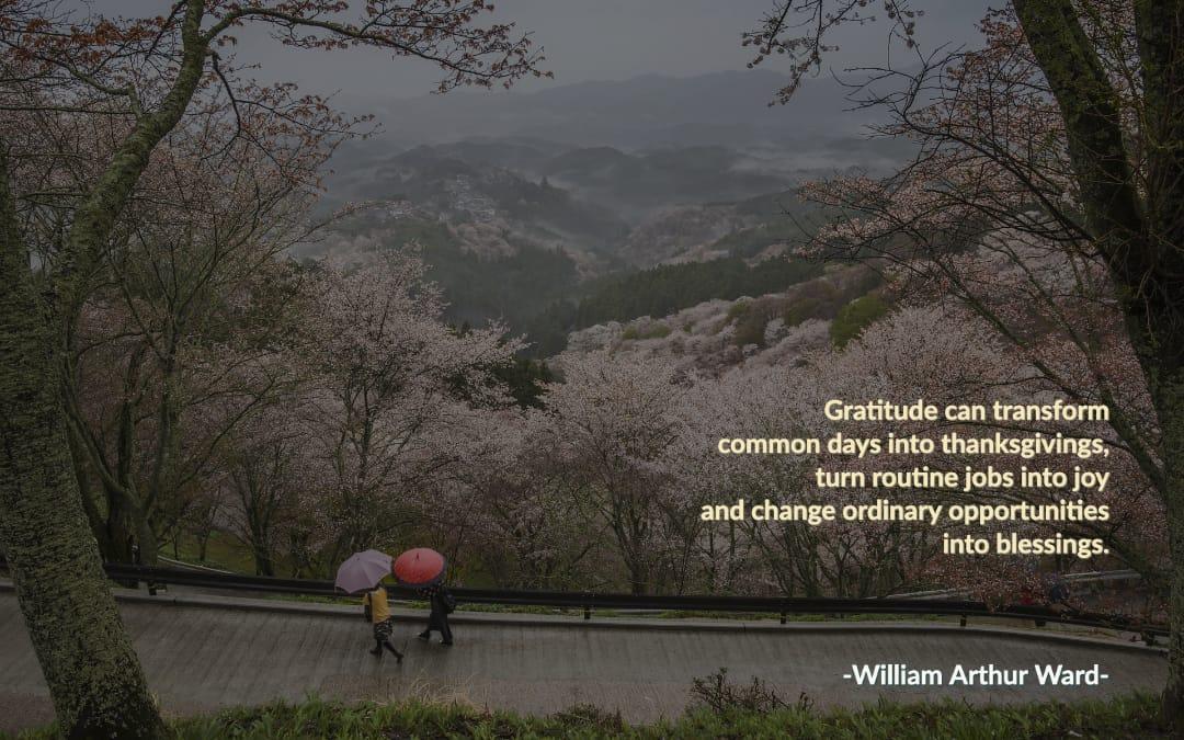 March Gratitude