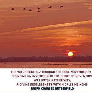 November Skies